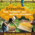 Recto-Expo-ruchers-aux-arbres-fruitiers